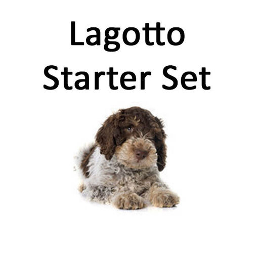 Lagotto Starter-Set