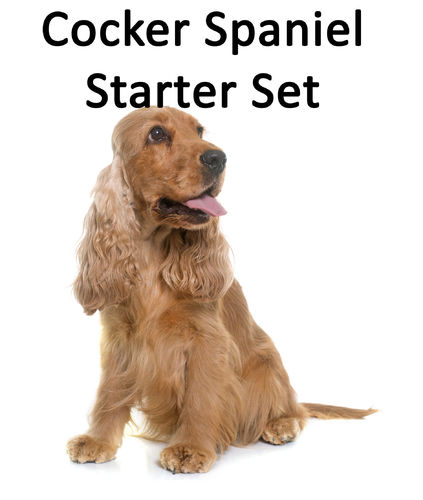 Cocker Spaniel Starter-Set