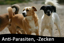 Anti-Parasiten, -Zecken